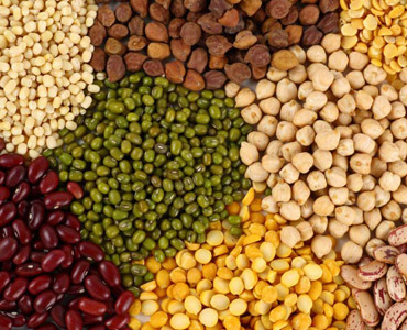 Indian Dal / Pulses Supplier Democratic Republic of Congo